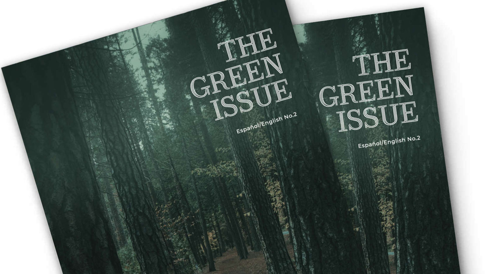 eco conscious green issue 2